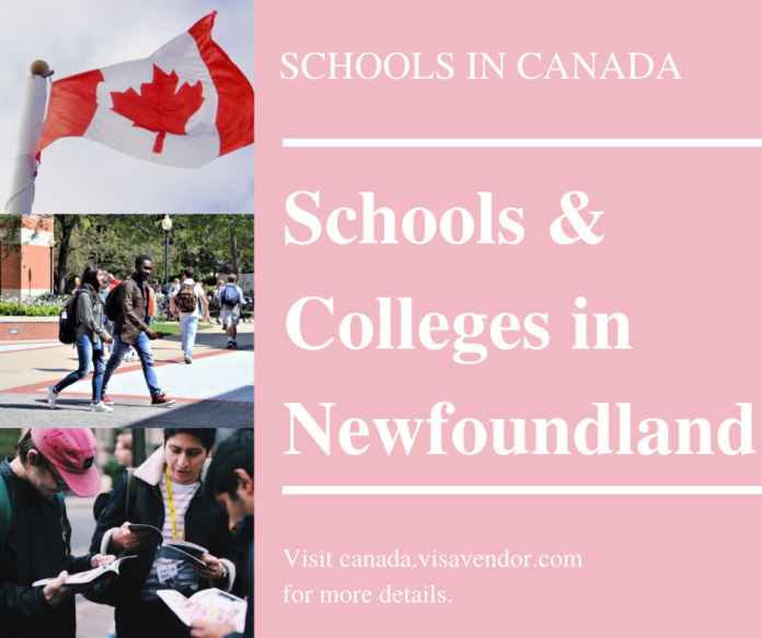 School and Colleges in Newfoundland